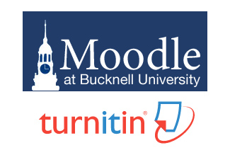 Moodle Turnitin Assignment